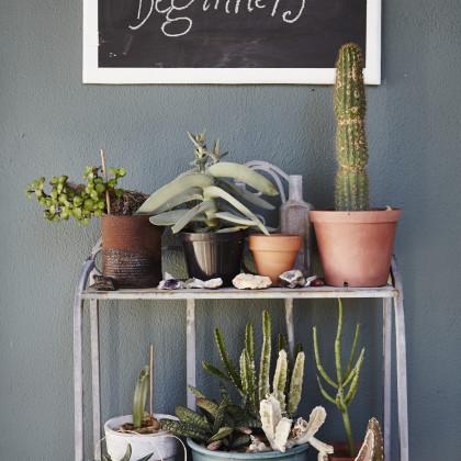 metal pot plant stand
